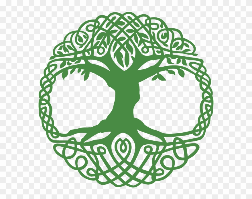 Celtic Tree Of Life Clipart 2041955 Pinclipart