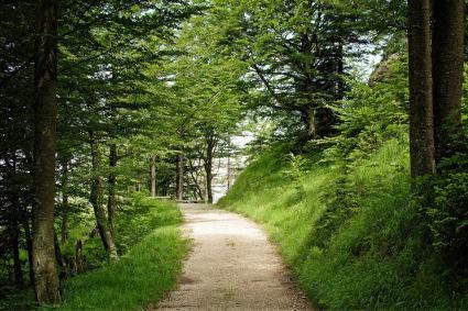 Walk away Stress
