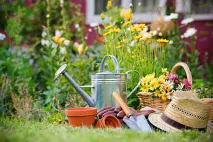Garden hat, tools and watering can are the gardeners tools.