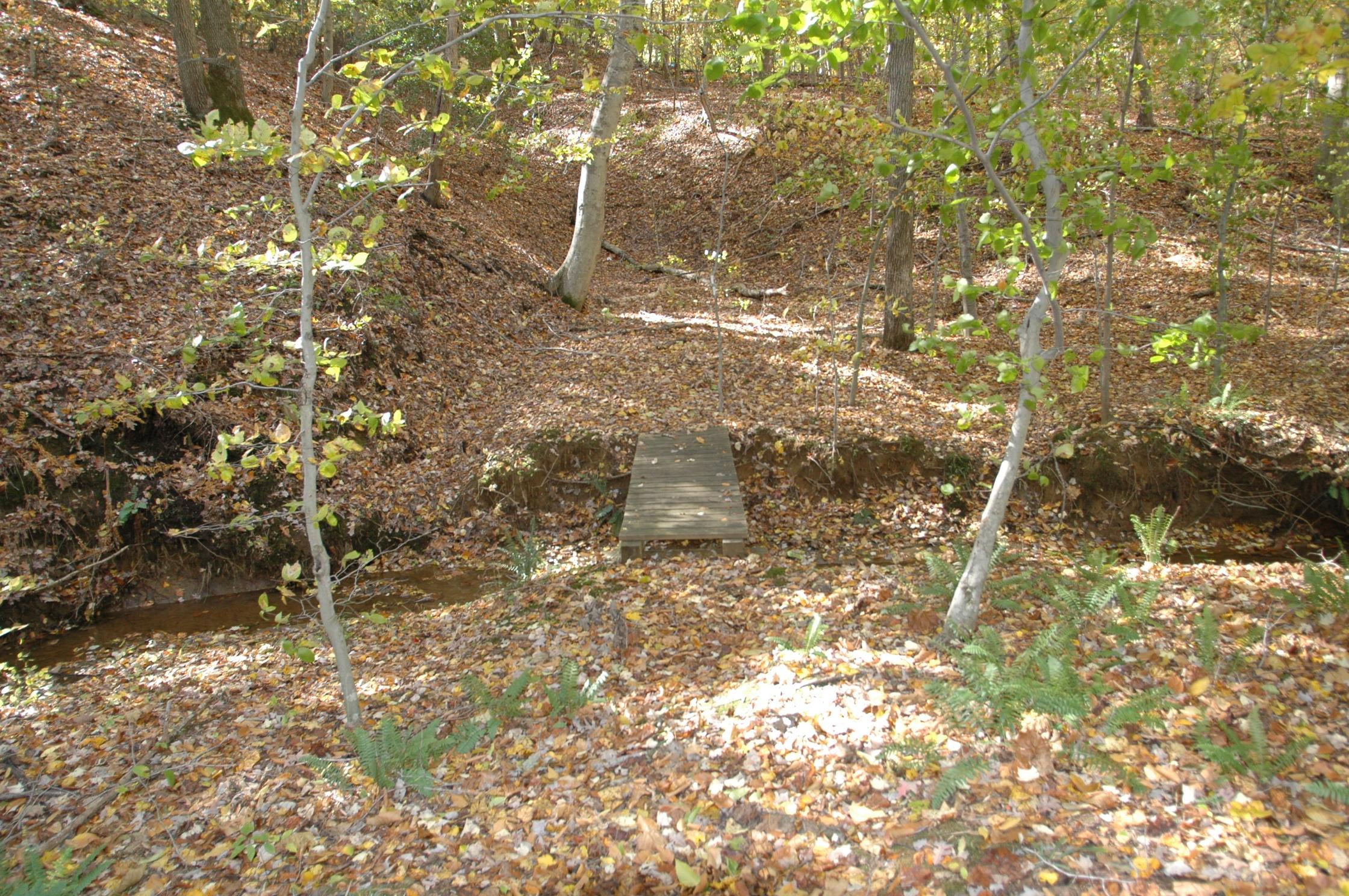 Pine Tree hiking trail footbridge.