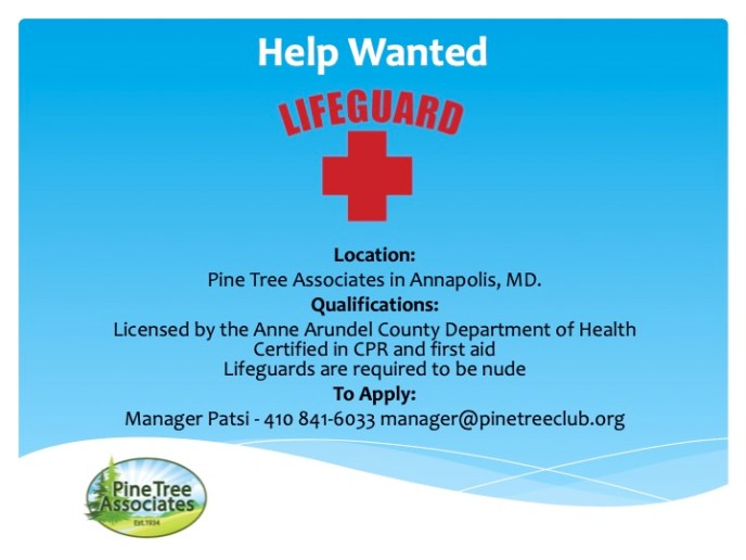 Life Guard  - Help Wanted Poster