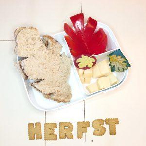 Lekkere gezonde brooddozen bento thema herfst Food Frobel Fun