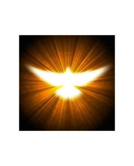 Golden Dove Reiki Attunement
