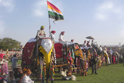 Elephant Festivals