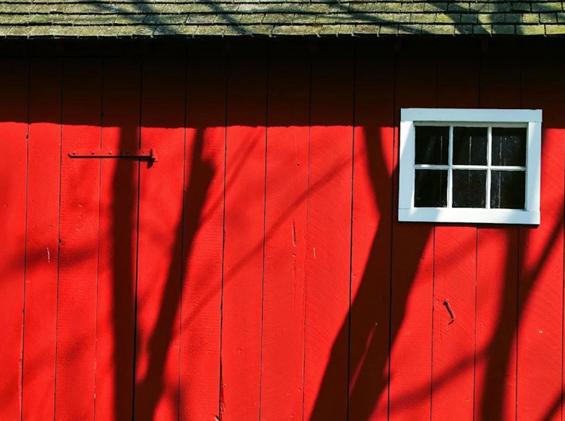 Czerwona farma w USA