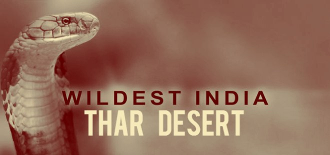 Wildest India Thar Desert Cover Picture
