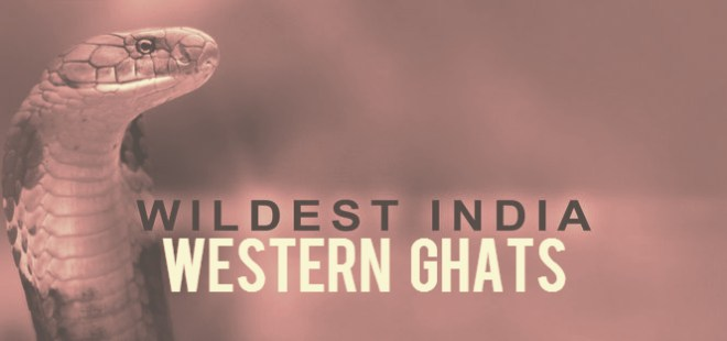Wildest India Western Ghats Cover Picture