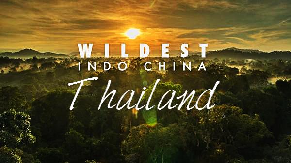 Wildest Indochina Thailand Cover Photo