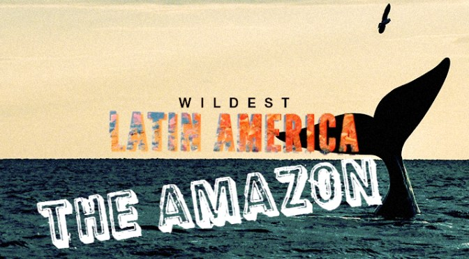 Wildest Latin America - The Amazon Cover Picture