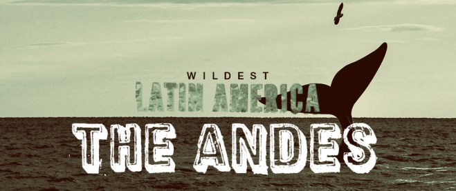 Wildest Latin America - The Andes Cover Picture
