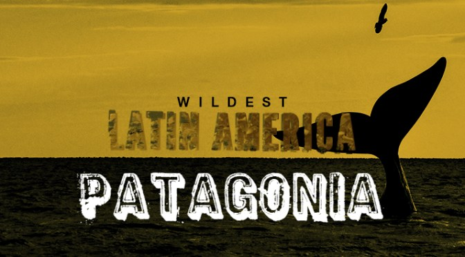 Wildest Latin America - Patagonia! Cover Picture