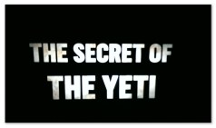 "Image of a black background with white text ""The Secret of the Yeti"""