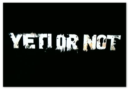 "Image of a black background with white text ""Yeti or Not"""