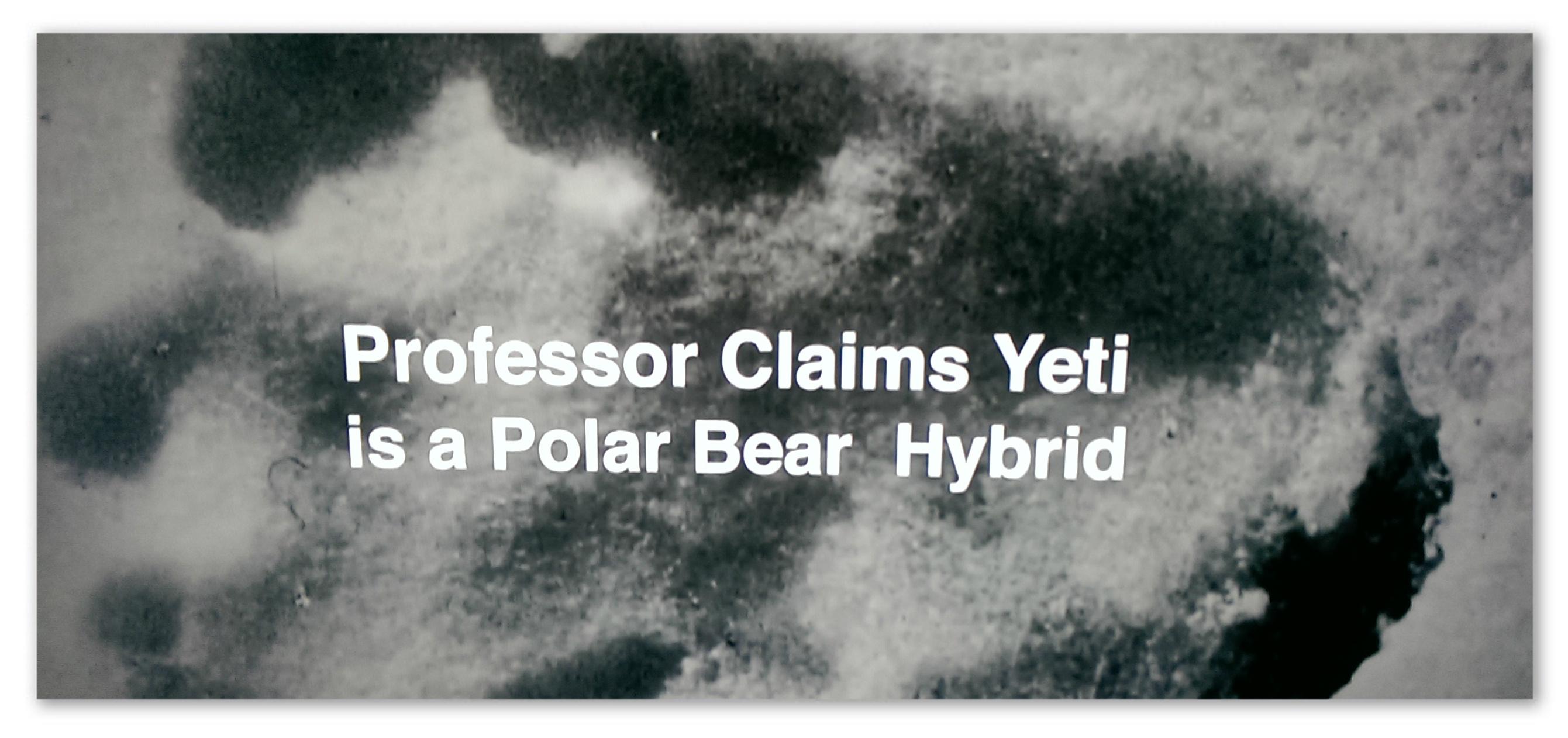 "Image of a footprint with text ""Professor claims yeti is a polar bear hybrid"""