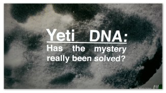 """Image of a footprint with text """"Yeti DNA: had the mystery really been solved?"""""""