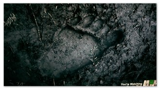 Image of a Yeti footprint