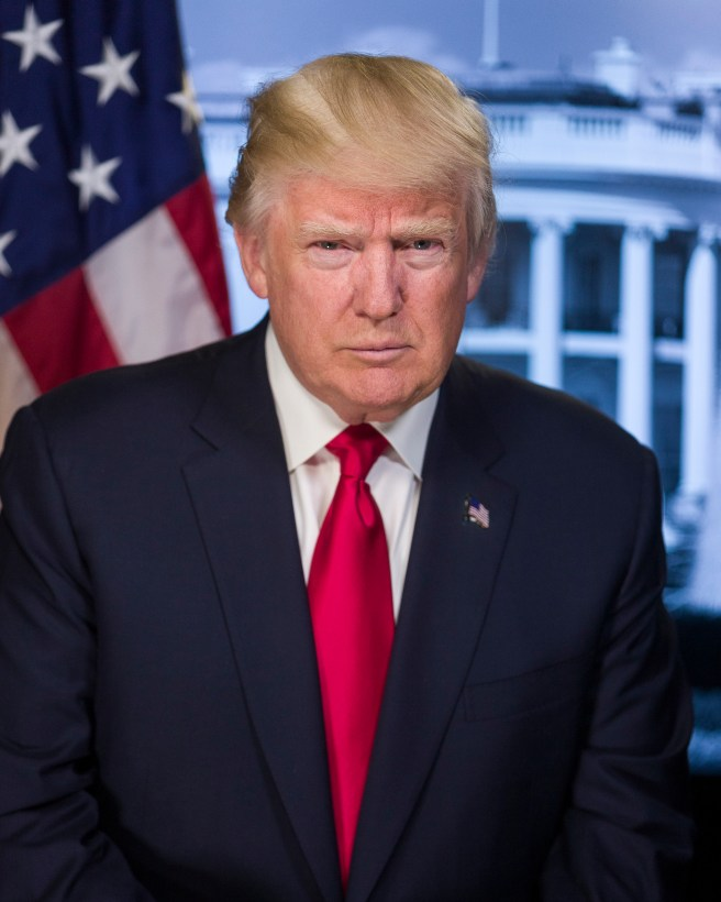 The 2017 official portrait of Donald Trump. You can find the original at Whitehouse.gov