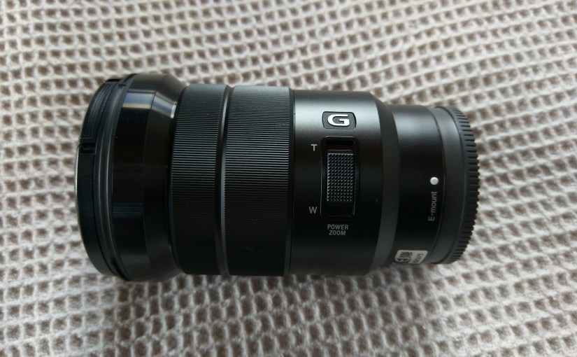 One Year with the Sony 18 – 105mm E Mount Lens