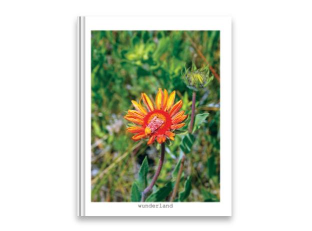 Wunderland – <em>a wildlife magazine…</em>