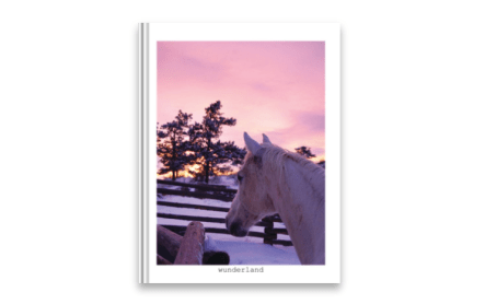 Snowy Equine Portraiture Front Cover