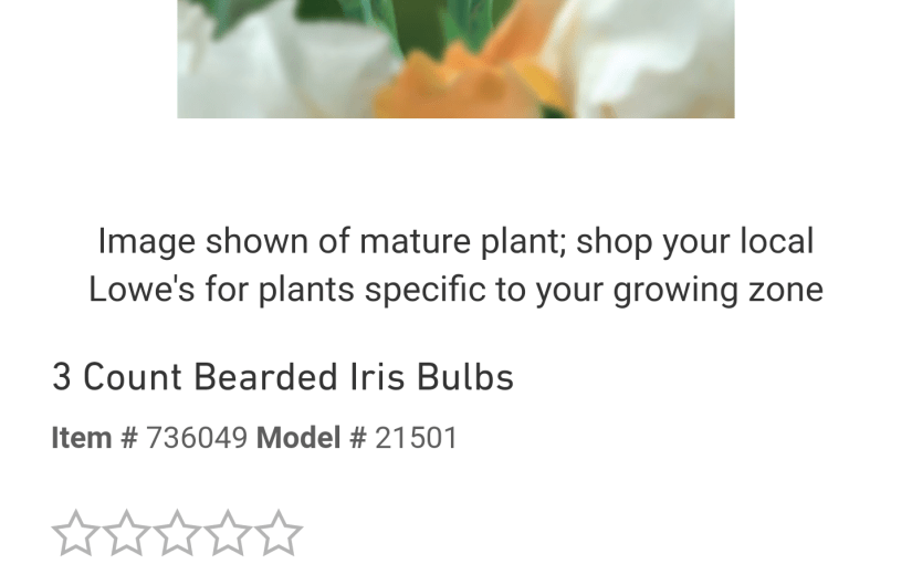 Lowes' Insane Bearded Iris Pricing