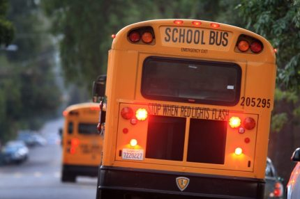 A school bus representing Illinois House approving a bill to teach LGBT history in schools