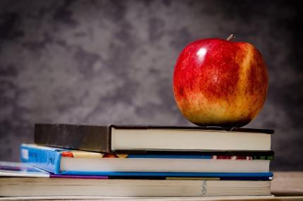 Photo of apple on books in front of school chalkboard