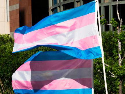 150 pride organisations condemn anti-transgender bigotry in joint statement