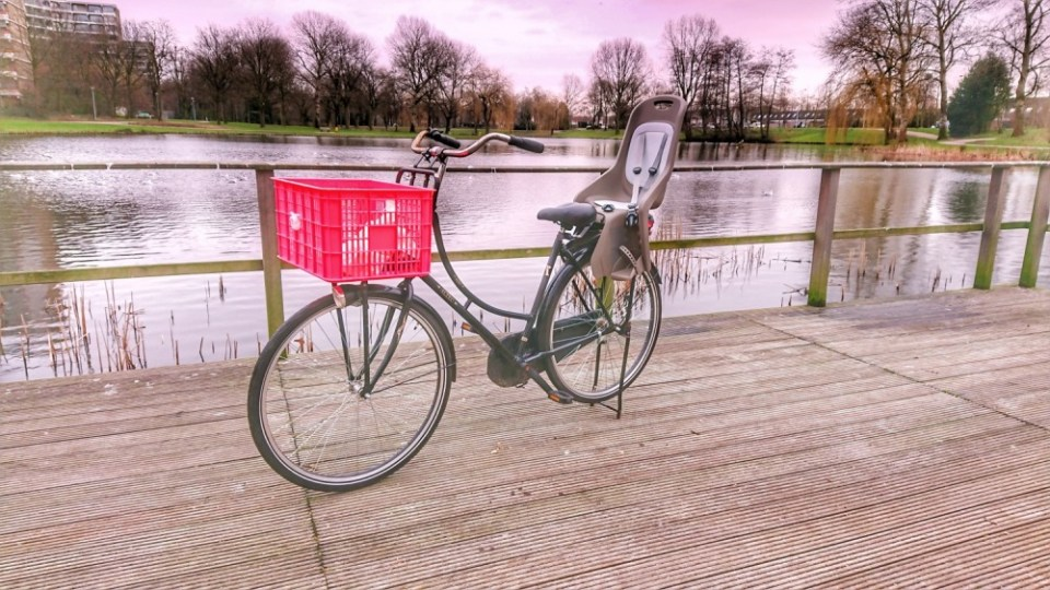 DSC 1379 01 - Review | Polisport Bubbly Maxi+ fietsstoeltje voor achterop de fiets