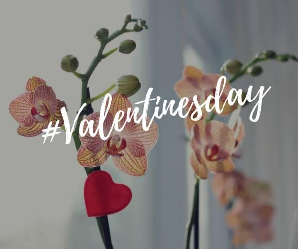 valentijnsdag - Valentijnsdag | Zeg het met bloemen!