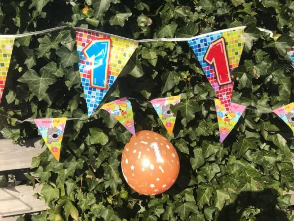 IMG 20180421 WA0033 - Alles voor een themaverjaardag | Met tips voor een tuinfeest
