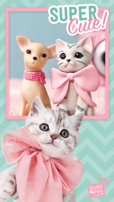 studiopets - De nieuwe must have speelgoed voor meisjes!