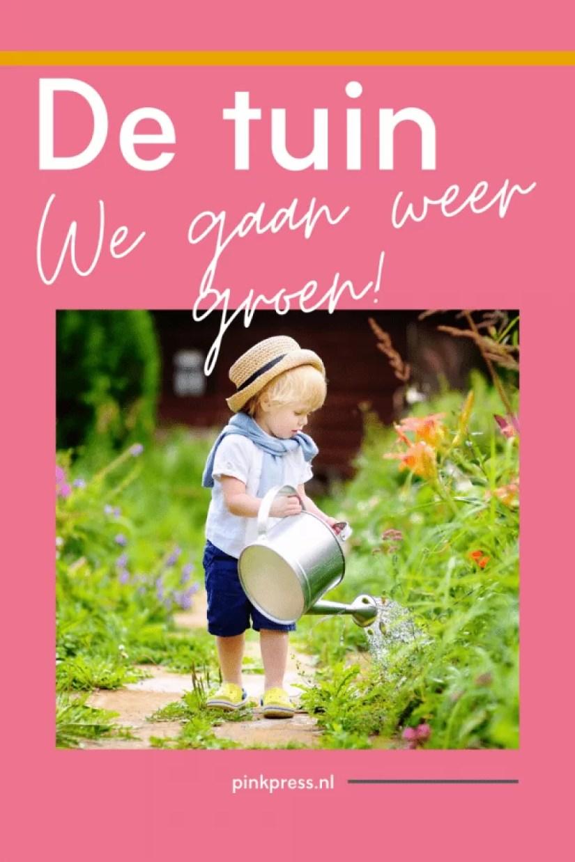 De tuin: we gaan weer groen!