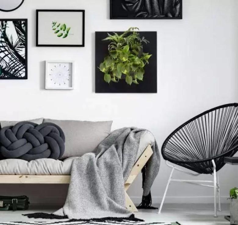rustig en groen in huis