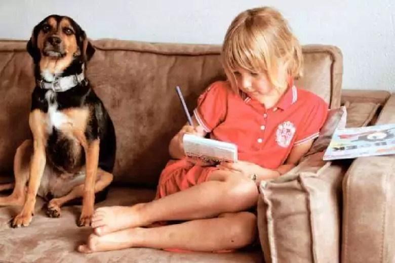 samen lezen in de zomer