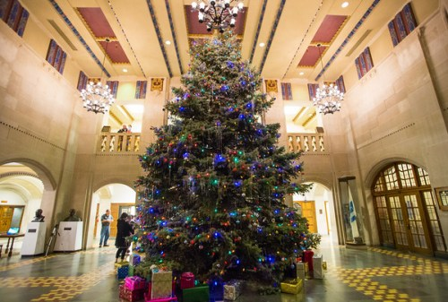 Image result for purdue christmas tree union
