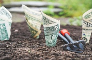 How-to-Invest-and-Grow-your-P10,000
