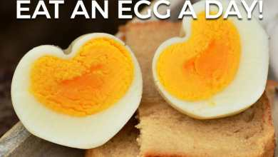 Photo of November #RelatableFitness Challenge: Eat An Egg A Day!
