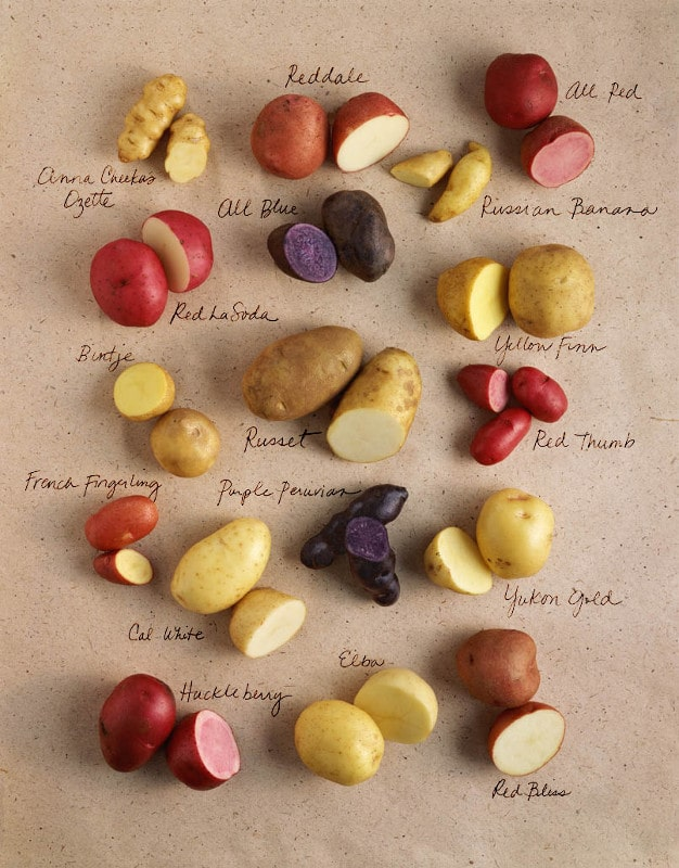 Potato Variety with Names 1
