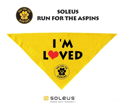 soleus-run-for-aspins-2015-bandana