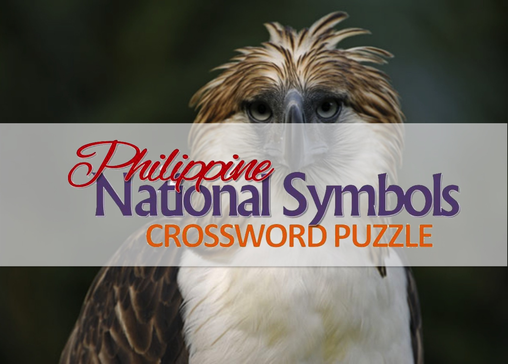 Activity Sheet Philippine National Symbols Crossword Puzzle Pinoy Stop