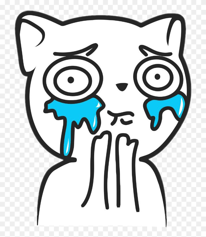 My Cat Looks Like The Crying Cat Meme Crying Meme On Me Me