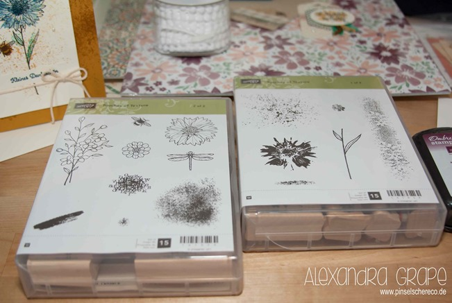 stampin-up_grand-vacation_discover-mediterranean_2016_pillow-gifts_pinselschereco_alexandra-grape_08