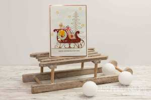 stampin-up_weihnachtsschlitten_santas-sleigh_pinselschereco_alexandra-grape_02
