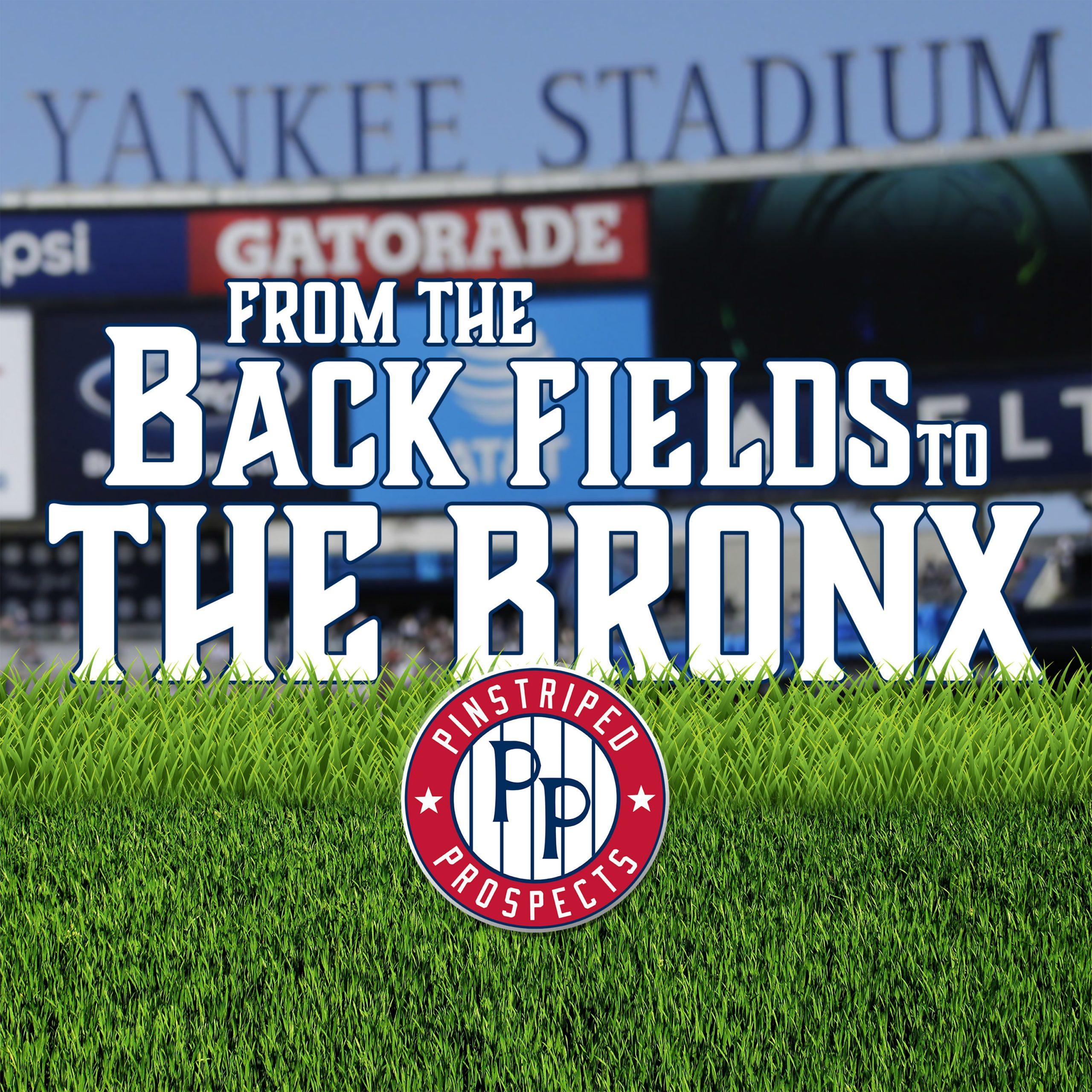 From Back Fields to the Bronx