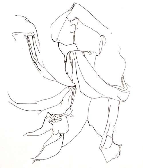 Dibujo lineal telas