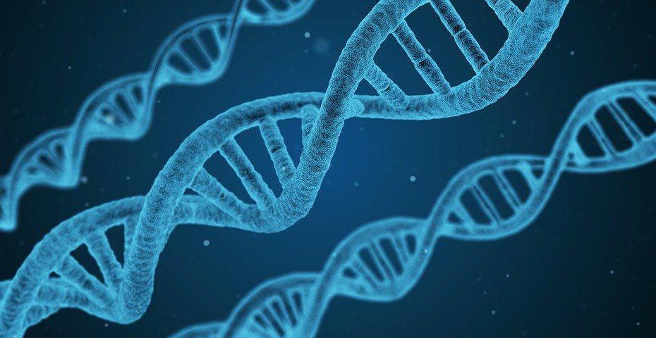 grafika przedstawiająca trzy nici DNA