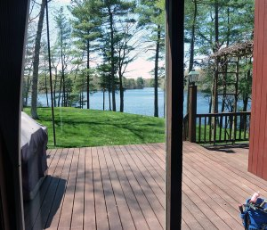 Gorgeous view through replacement double pane insulated glass.