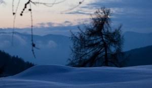Schneedecke in Abendstimmung