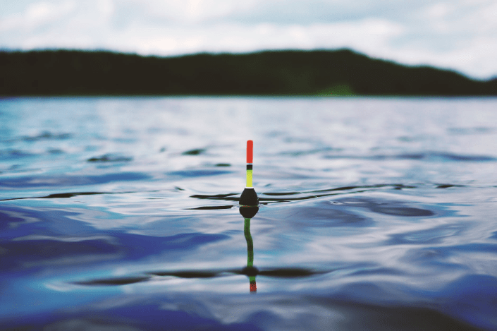 a bait floating on water surface